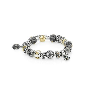 (FT3247) Pandora Peaceful Garden Inspirational Bracelet