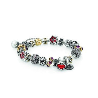 Pandora Mother's Embrace Inspirational Bracelet (CR2449)